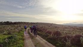 mountain bikers ride their mountains bikes. Sunset