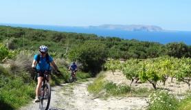mountain biking excursion