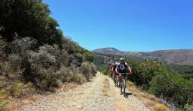 bike ride through the wild landscape