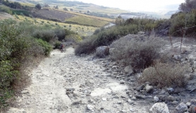 avgerinos Rocca mountainbike tour of Crete the rocky garden