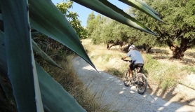 giouchtas giouchtaki mountain bike tour Crete Greece 6