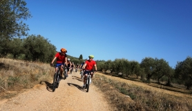 relaxed tour cyclingcreta bike rentals Crete guided tours