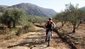ride through the olives cyclingcreta bike rentals Crete guided tours