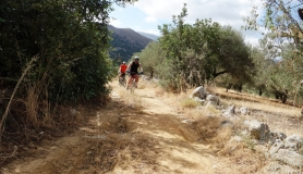 small cycling path cyclingcreta bike rentals Crete guided tours