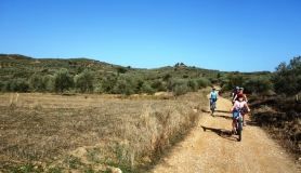 small kids cyclingcreta bike rentals Crete guided tours