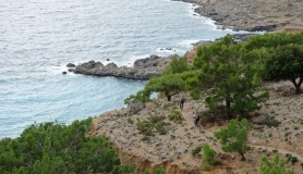 the path kapetaniana kofinas koudoumas mountain bike tour Crete Kreta