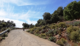 The great bike climb of Kritsa smells sage and Thyme