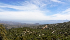Prinos forest of Krista and Merabelo Gulf