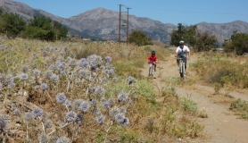 dad with his son ontheri mountain bikes for a guided tour on Lasithi plateau