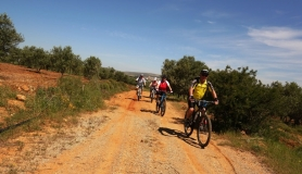 Pediada of Heraklion easy mtb tour cyclingcreta2