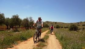 Pediada of Heraklion easy mtb tour cyclingcreta4