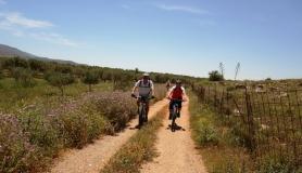 Pediada of Heraklion easy mtb tour cyclingcreta5