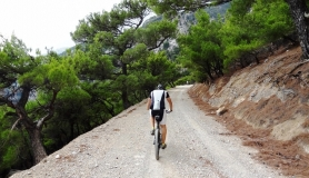 rouvas forest bike tour Crete 16-min
