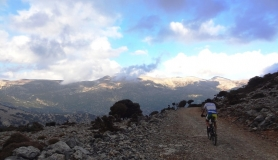 rouvas forest bike tour Crete 2-min