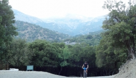 rouvas forest bike tour Crete11-min