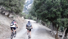 rouvas forest bike tour Crete12-min