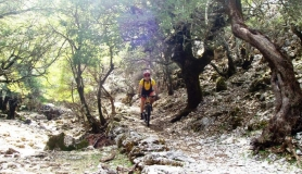 rouvas forest bike tour Crete17-min