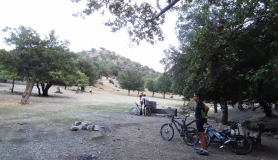 rouvas forest bike tour Crete7-min