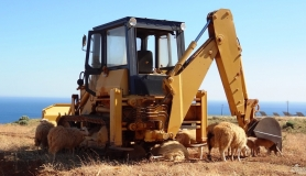 rest under the shadow of a buldozer