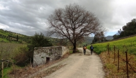 stone village bike tour Agios Thomas small country house