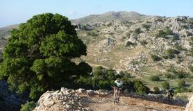 cyclist on a steep uphill