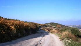 Xerolia mountain bike tour near Heraklion Crete vine yards