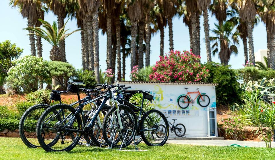 our_bikes_4