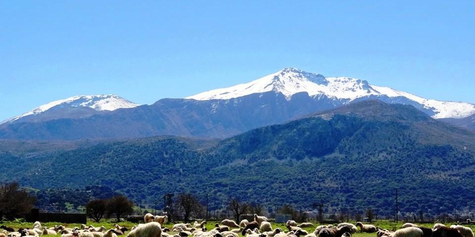dikti mountains & lasithi plateau