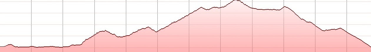 selena-round-elevation-profile