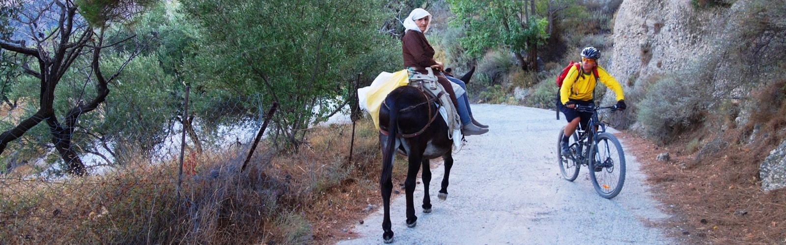 old-cretan-lady-with-a-donkey-and-a-cyclist-min