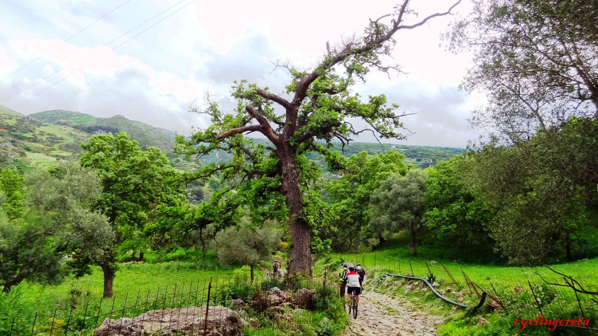 Monopari Rethymno Crete