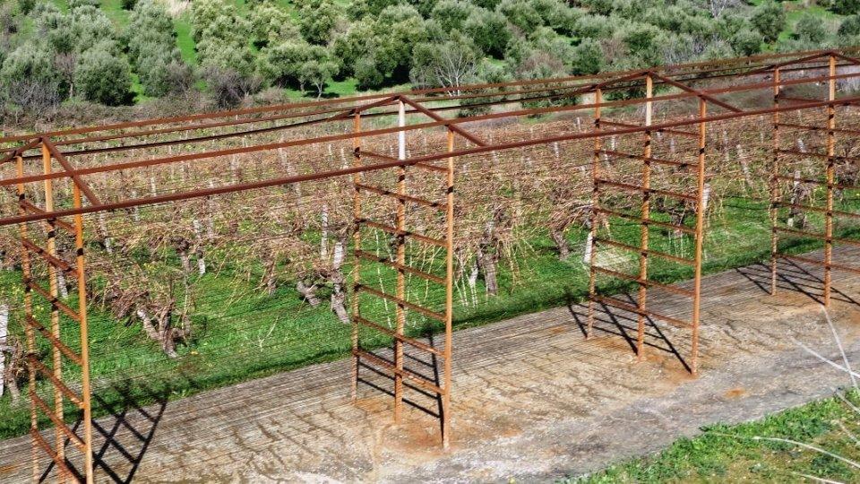 opsigias at agios myronas village Crete the ruins of the open air natural raisins sultanas driers small