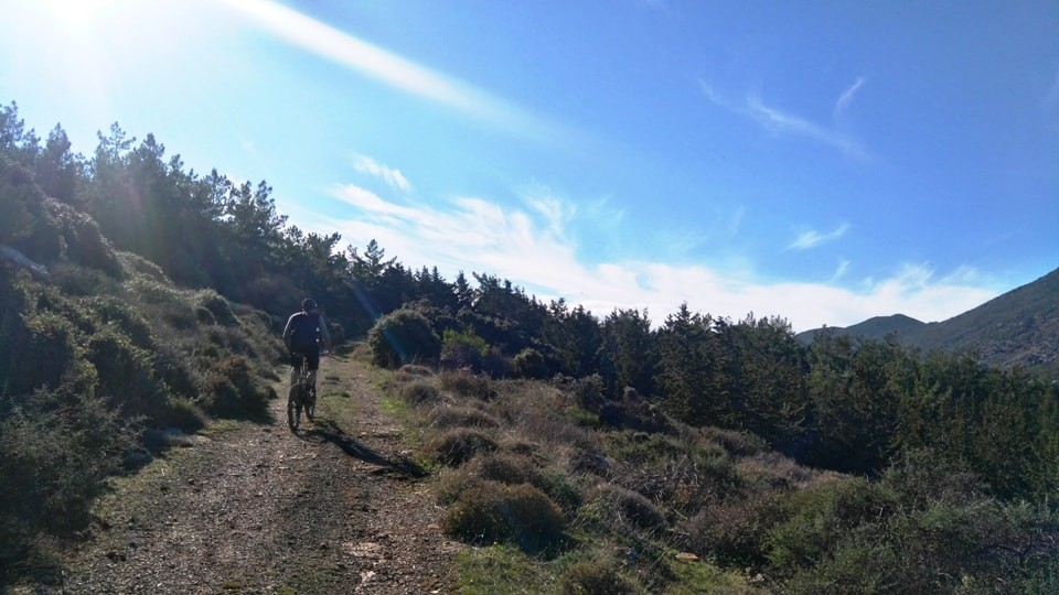 fourni playground archanes Giouchtas pine forest