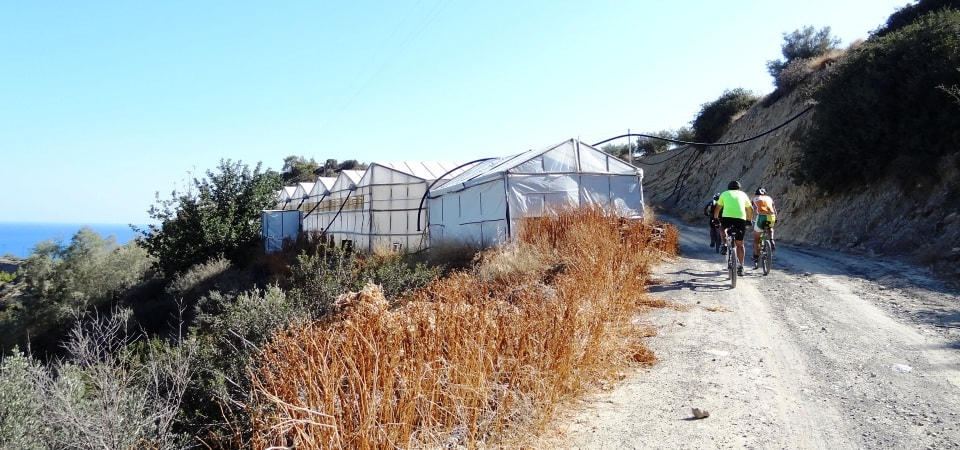 green houses of crete