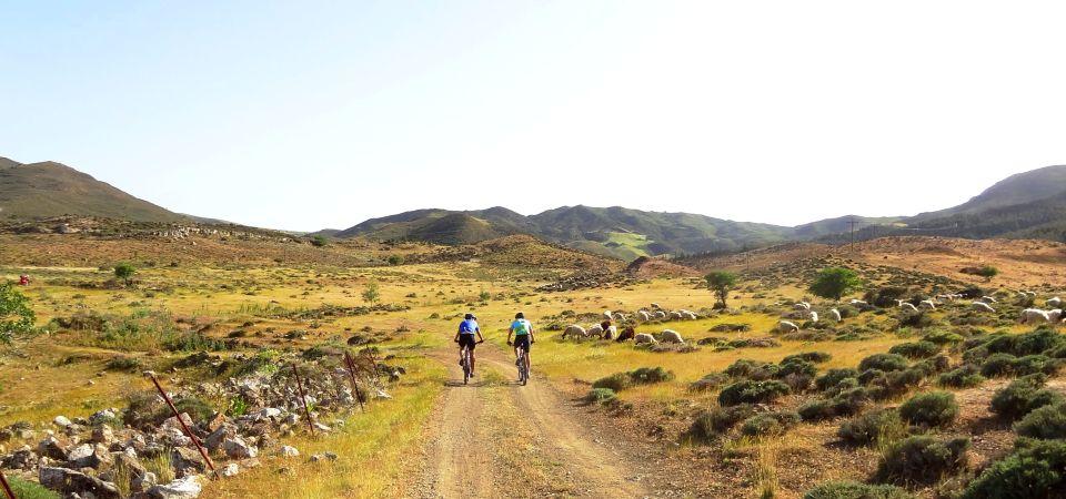 pastures of crete