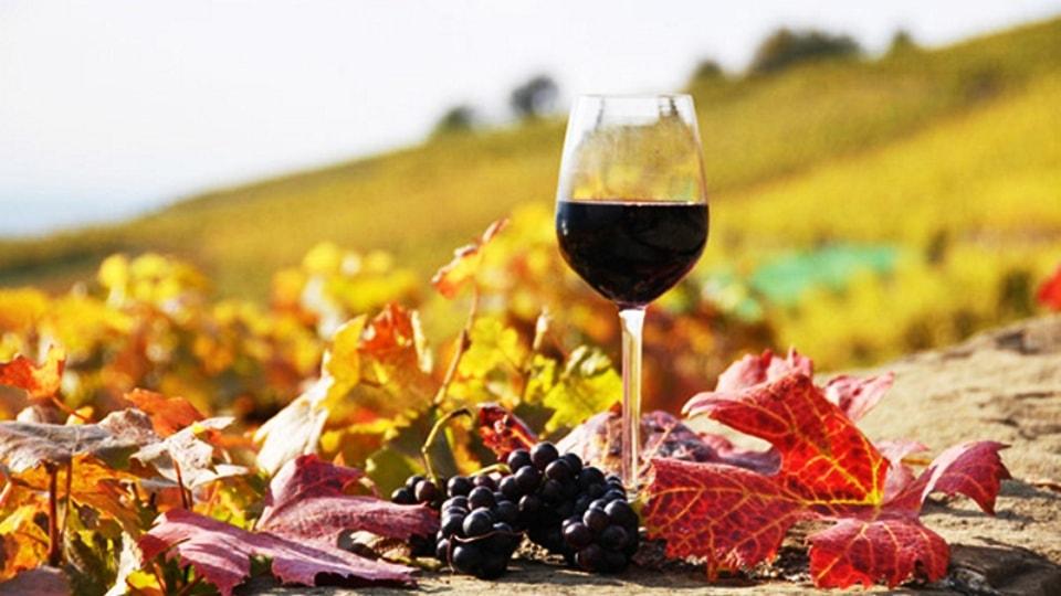 red wine crete