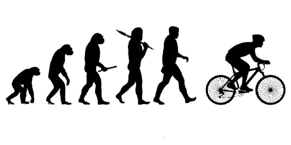the stages of cycling - feature img