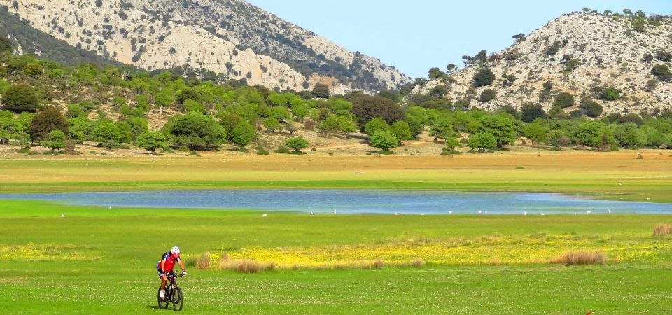 wetlands of crete omalos viannou