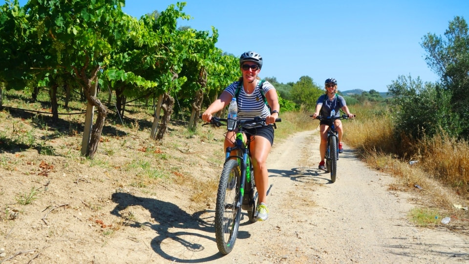 cretanization ebike tour of Crete wines