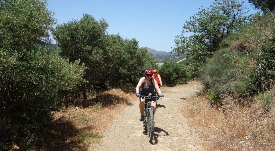 damakas ebike tour crete Kreta efahrrad tour mavariana Avdou-olive forest-min