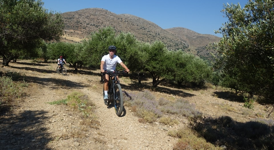 Lagoon ebike tour Crete Hersonissos Malia Stalis Analipsi Gouves Cube reaction bikes-riding through the olives-min